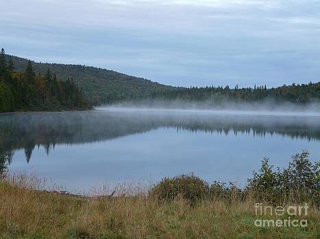 Foggy Morning by Glass Slipper