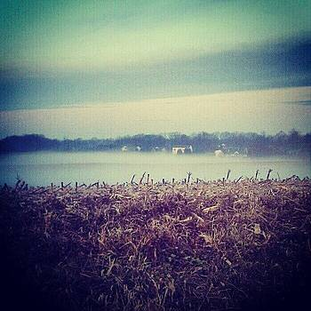Foggy Morning In The Country by Rebecca Kowalczik