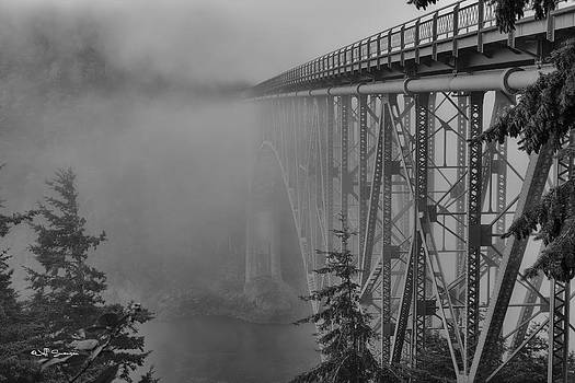 Foggy Morning by Jeff Swanson