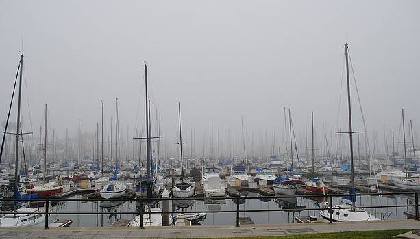 Foggy Morning Marina by Jill Baum