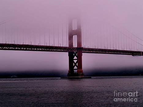 Craig Pearson - Foggy Morning Symphony