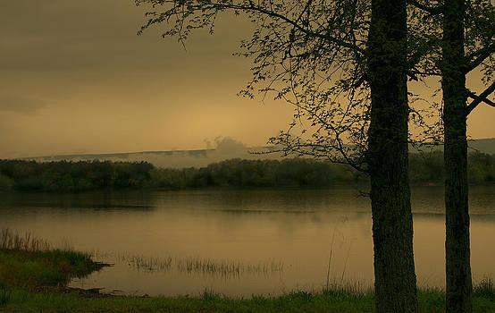 Nina Fosdick - Foggy