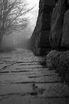 Foggy Path by Sarah Yost
