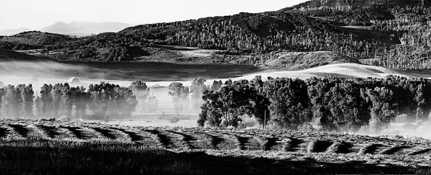 John McArthur - Foggy Ranch Sunrise B.W.