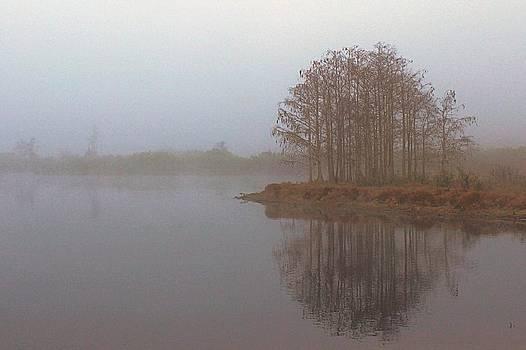 Howard Markel - Foggy Reflection