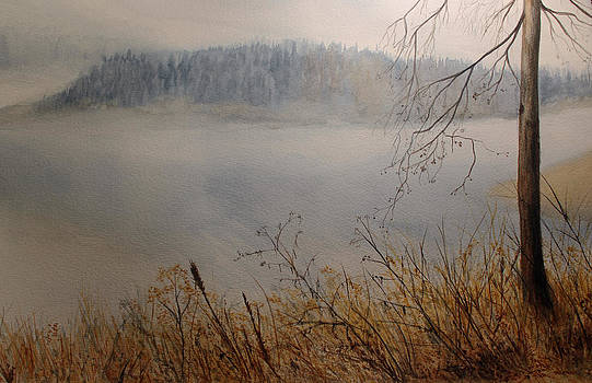 Foggy River by Carol Oberg Riley
