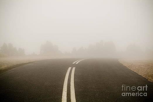Tim Hester - Foggy Road