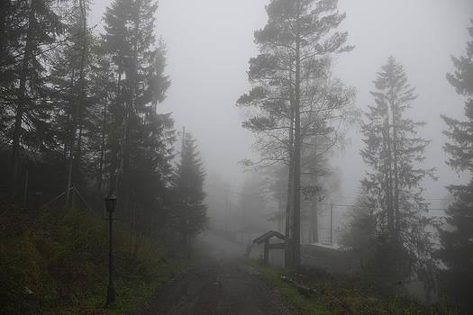 Foggy Romance 1 by Teo SITCHET-KANDA