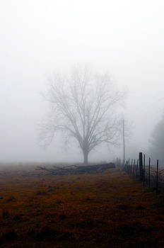 Foggy Sunday by Leon Hollins III