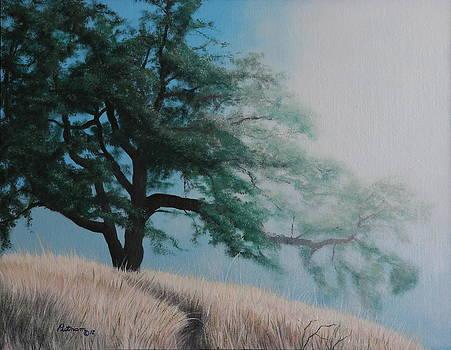 Fog's Morning Kiss by Michael Putnam