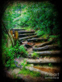 Follow Me to an Adventure by Lorraine Heath
