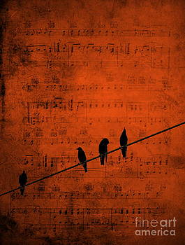 Follow the Music by Andrea Kollo