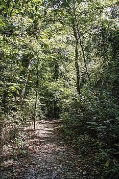 Follow The Path by Linda A Waterhouse
