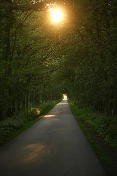 Follow the sun by Erik Tanghe