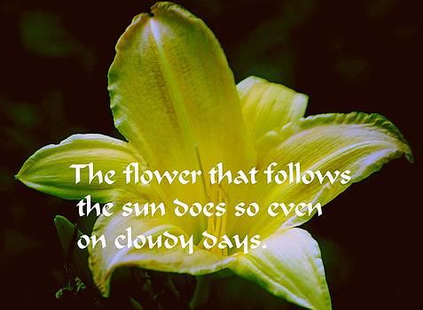 Gary Wonning - Follow the Sun
