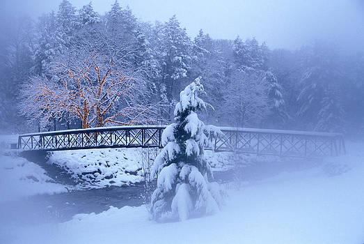 Foot Bridge Over Stream In Snowy Woods by Vintage Images