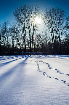 Foot prints in the snow by Robert Painter