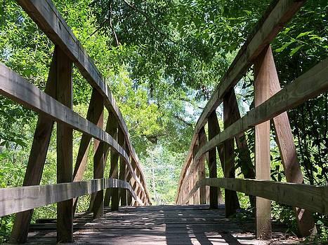 Footbridge by Dana Doyle
