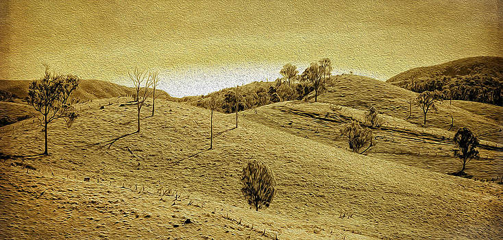 Foothills 1 by Tony Steinberg