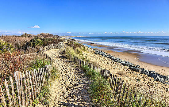 Footpath on the Atlantic Dune in Brittany by Radu Razvan