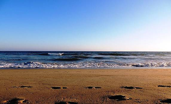 Footprints in the Sand by Amy Bracy