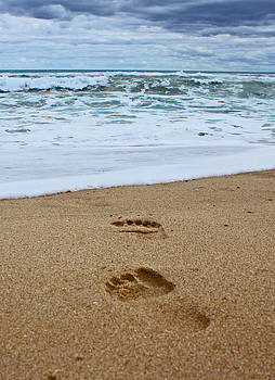 Footprints In The Sand by Mamie Thornbrue