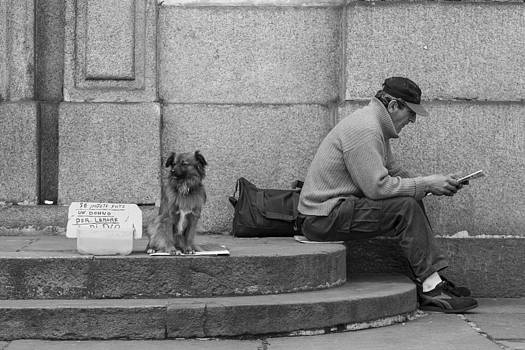 For the Love of Dog by Sonny Marcyan