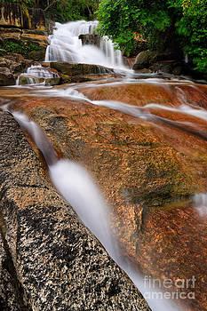 Force of nature by Jordan Lye