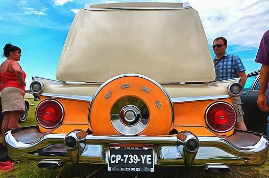 Ford Galaxie Skyliner 4 by Mick Flynn