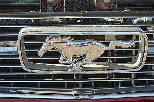 Ford Mustang Pony by Making Memories Photography LLC
