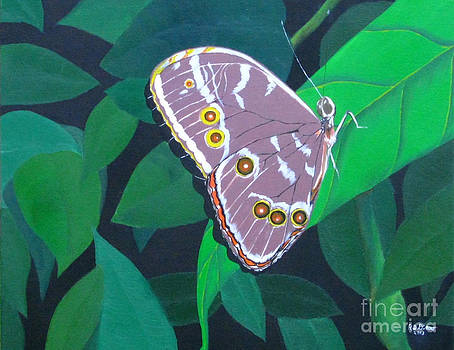 Forest Butterfly by Richard Dotson