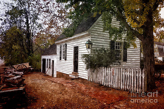 Shari Nees - Forest Cottage