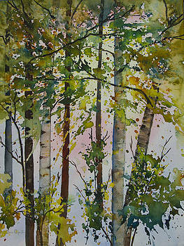 Dee Carpenter - Forest Fantasy