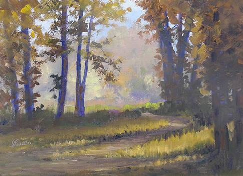 Forest Glow by Judy Fischer Walton