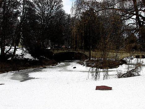 Forest Home Pond by Kimberly Mackowski