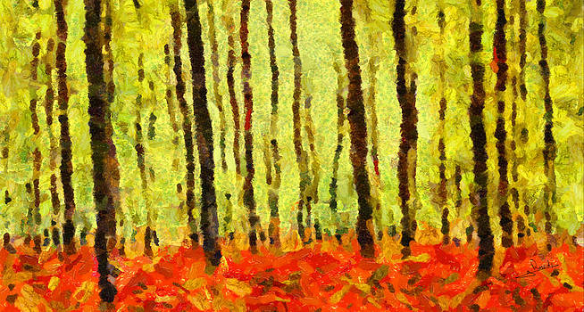 Forest in Autumn by George Rossidis