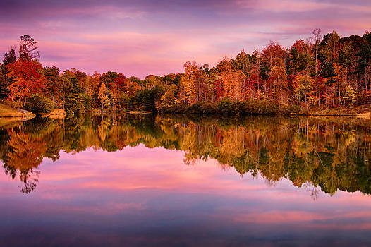 Forest Lake by Robert Hainer