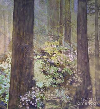 Diana Besser - Forest LIght