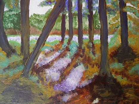 Forest Meadow by Suzanne Buckland