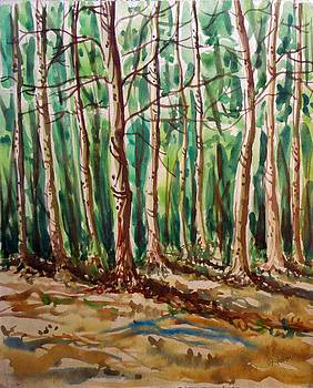 Forest painting by Hashim Khan
