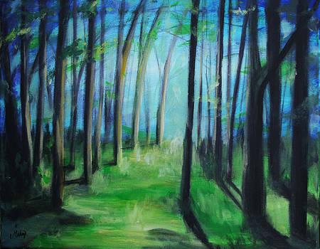 Forest Path by Maryn Crawford