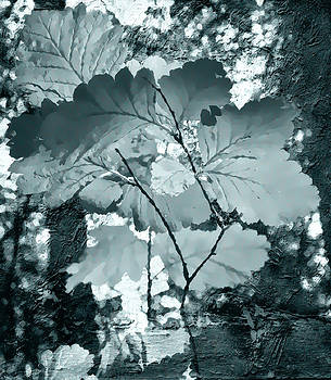 Forest Reach Monochrome by Kathy Bassett