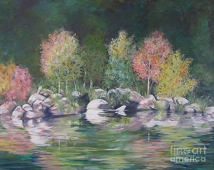 Forest Reflections by Denise Hoag