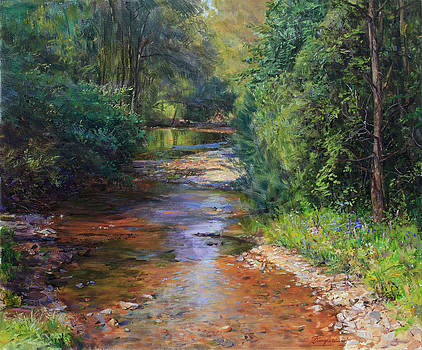 Forest River  by Galina Gladkaya