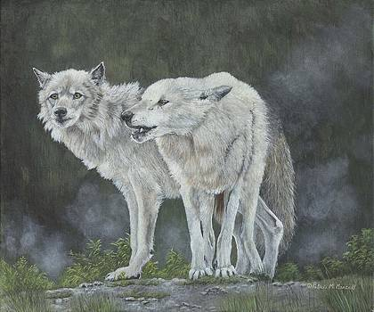 FOREST SHADOWS-Grey Wolf by Patricia Mansell