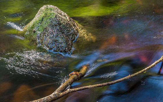Forest Stream by Janne Mankinen
