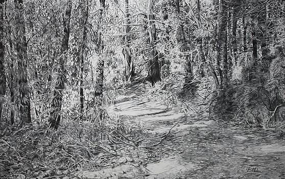 Forest Track by Leonie Bell