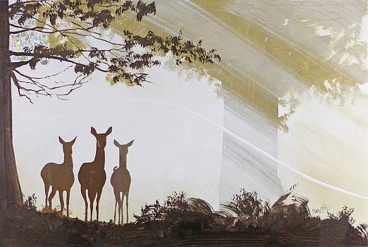 Forest Trio by Jack Hanzer Susco