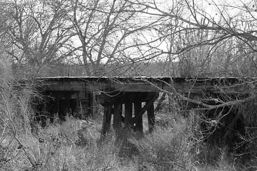 Forgetten Train Trestle by Rod Andress