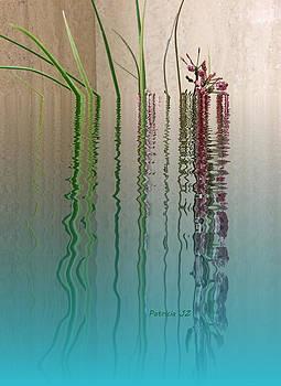 Forgive Reality by Patricia Januszkiewicz